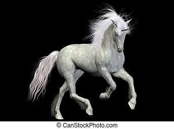 white unicorn - a beautiful white unicorn - isolated on ...