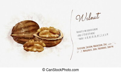 A beautifully animated card with information about Walnut -...