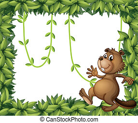 A beaver and the empty frame with vine plants