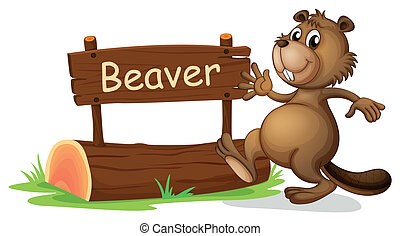 A beaver beside a wooden signage