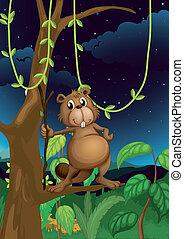A beaver in the jungle