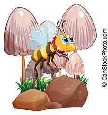 A bee near the mushrooms and rocks