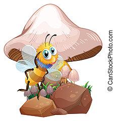 A bee near the mushrooms
