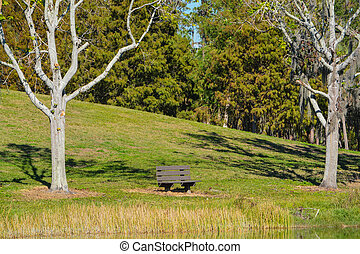 A bench over looking the cove on Lake Seminole in Seminole, Florida.