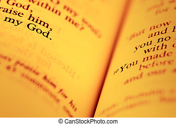 a, biblia, apródok