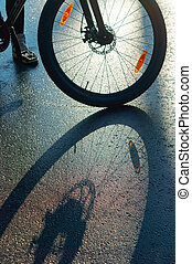 a Bicycle wheel on the pavement, shadow of Bicycle on the road