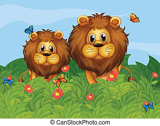 A big and a young lion in the garden