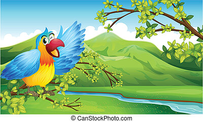 A big and colorful parrot near the river