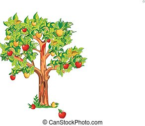 apple tree - A big apple tree with ripe apples.