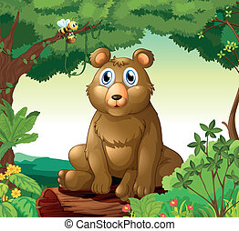 A big bear in the forest