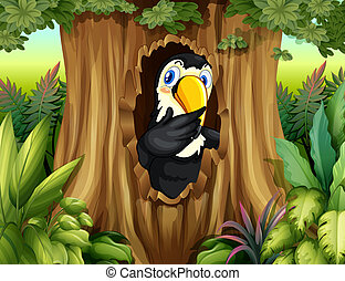 A big bird in the forest