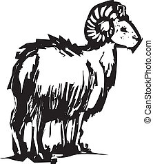 big horn sheep - A big horn sheep from a mountainside out in...