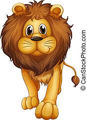A big lion