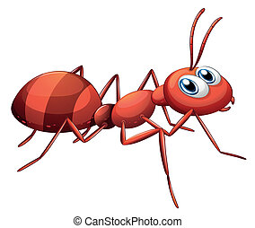 A big red ant