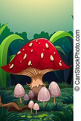 A big red mushroom