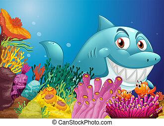 A big shark near the coral reefs