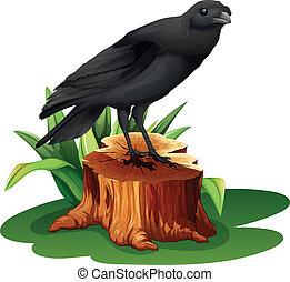 A bird above the stump