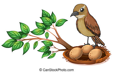 A bird at the branch of a tree watching the nest