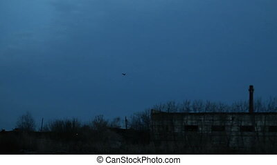 A bird flies in the night sky, a bird flies over abandoned buildings