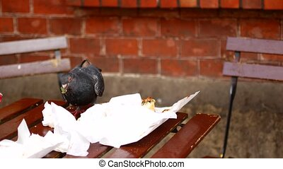 A bird in an outdoor cafe sits on a table and eat leftover food.