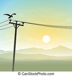 A Bird on Telephone Lines