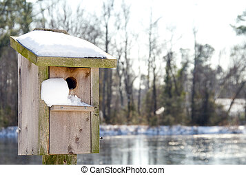A Birdhouse in the Snow
