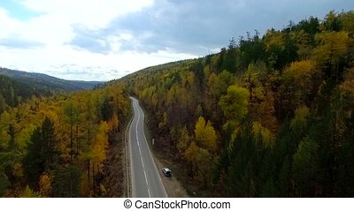 A bird's-eye aerial flight over the road autumn forest. Russia Buryatia