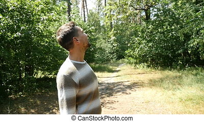 A birdwatching young man looks up at pine trees in a summer...