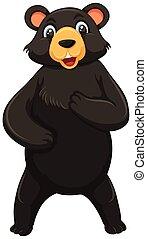 A black bear on white background