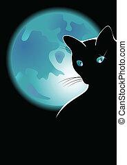 a black cat sits on a background Lunar