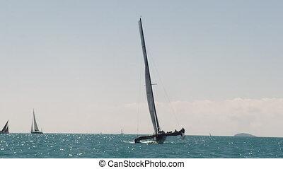 A black catamaran sailing the blue ocean