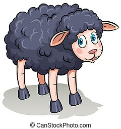 A black sheep on a white background