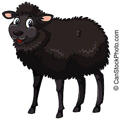 A black sheep on white background