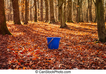 a blue empty plastic bucket in the autumn forest