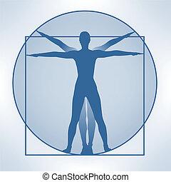 leonardo proportions - a blue illustration showing the ...