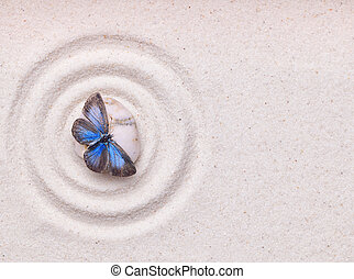 A blue vivid butterfly on a zen stone with circle patterns in th