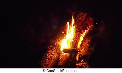 A bonfire night. Burning firewood in a close-up. Burning red flame. Burning fire at night. Burning flame of fire