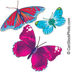 a, borboleta, 3