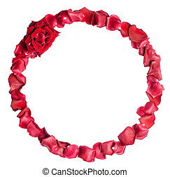 A border of red rose petals. Iisolated on white background with clipping path;
