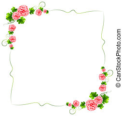 A border with carnation pink flowers - Illustration of a...