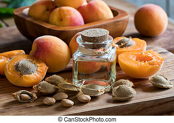 A bottle of apricot kernel oil with apricot kernels and ripe apricots on a wooden background