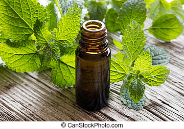 A bottle of melissa essential oil with fresh melissa leaves...