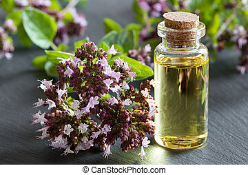 A bottle of oregano essential oil with blooming oregano