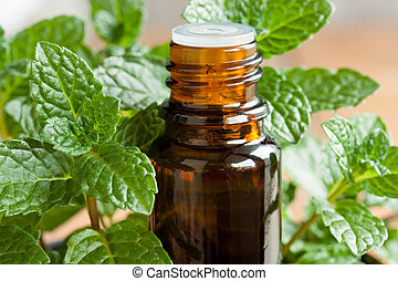 A bottle of peppermint essential oil with peppermint twigs