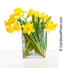 A bouquet of beautiful daffodils in a glass vase isolated on white