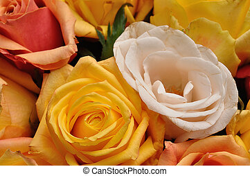 A bouquet of colorful roses