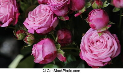 A bouquet of incredibly beautiful pink roses.