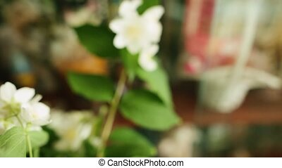 A bouquet of jasmin flowers in a vase. Shallow depth of field.