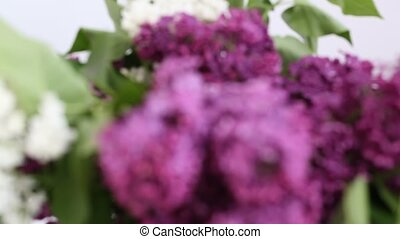 Lilac  - a bouquet of lilacs. Lilac and white