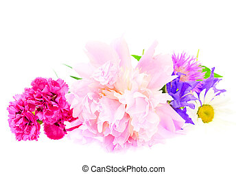 A bouquet of peony, carnation and clover isolated on white...